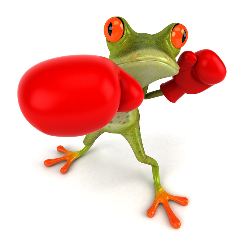 Knock-out Frog
